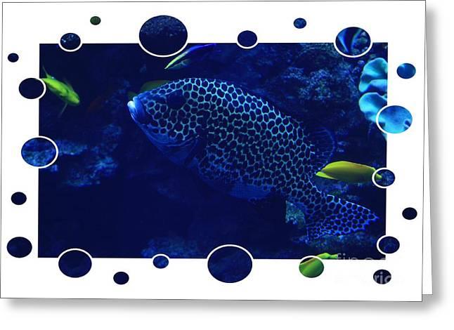 Blue Fish Greeting Card by Carol Groenen