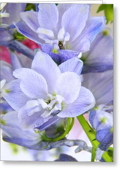 Blue Flowers Greeting Card by Alyona Firth