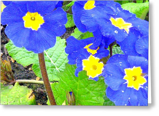 April Showers Greeting Cards - Blue Flowers Greeting Card by Mindy Newman