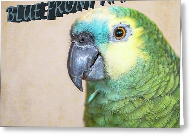 Blue Front Amazon Greeting Card