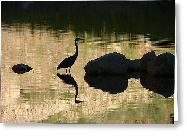 Blue Heron Greeting Card by Angie Wingerd
