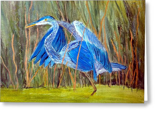 Blue Heron In Viera  Florida Greeting Card