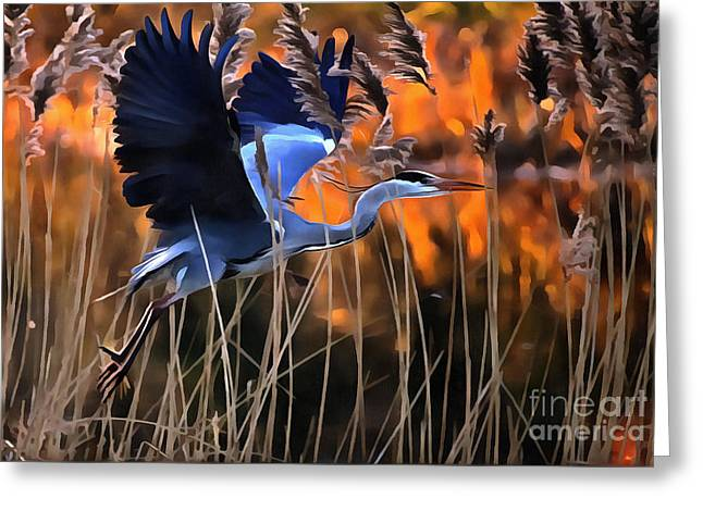 Blue Heron Greeting Card