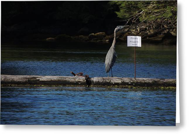 Blue Heron Private Property Greeting Card