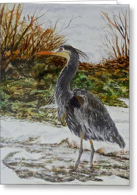 Blue Heron Greeting Card by Sher Nasser