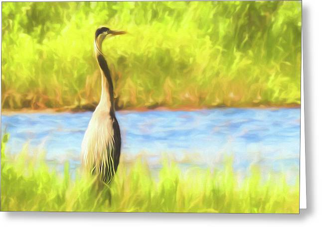 Blue Heron Standing Tall And Alert Greeting Card