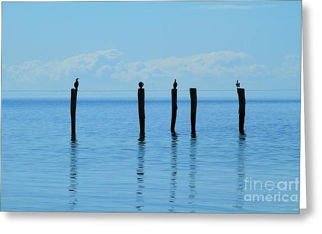 Greeting Card featuring the photograph Blue Horizon by Stephen Mitchell
