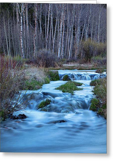 Blue Hour Streaming Greeting Card by James BO Insogna