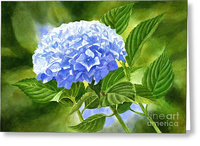 Blue Hydrangea Blossom With Background 2 Greeting Card by Sharon Freeman