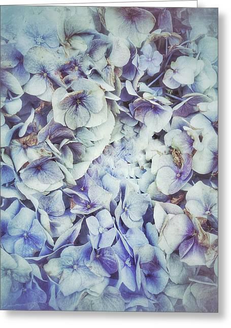 Blue Hydrangeas Background  Greeting Card by Tom Gowanlock