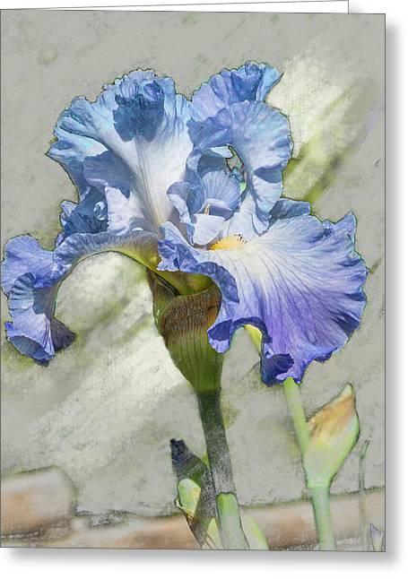 Blue Iris 2 Greeting Card