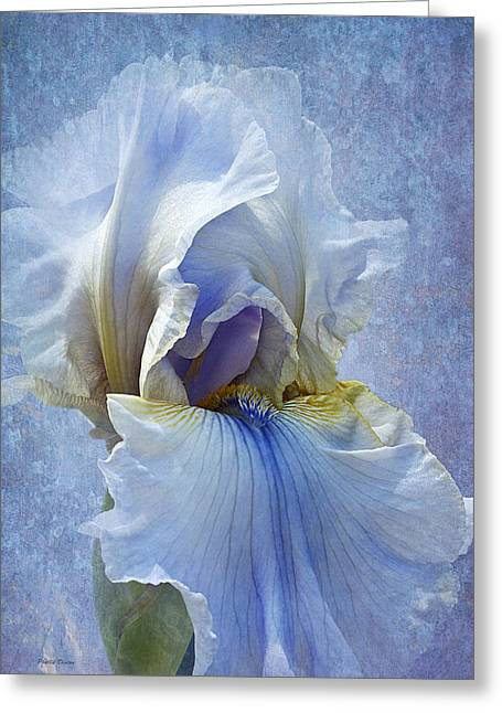 Blue Iris Fog Greeting Card