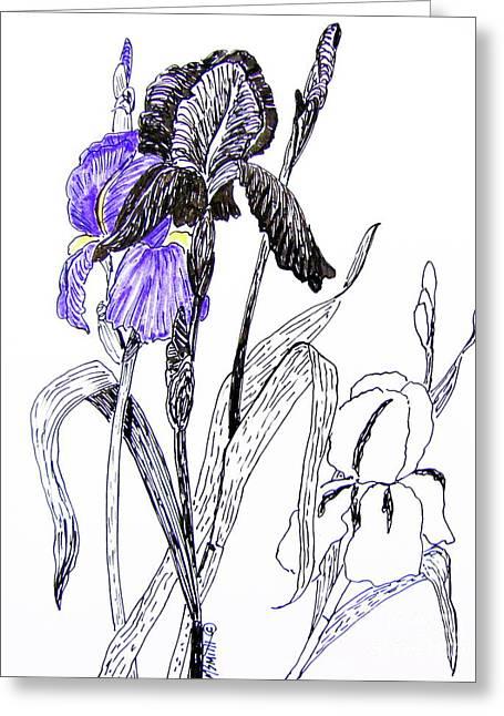 Blue Iris Greeting Card by Marilyn Smith