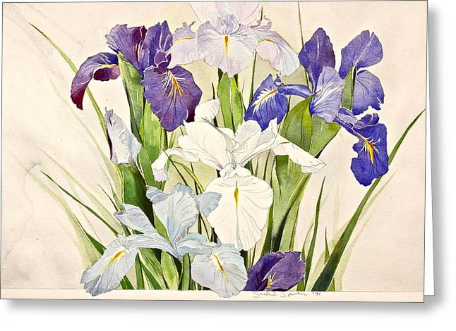 Blue Irises-posthumously Presented Paintings Of Sachi Spohn  Greeting Card