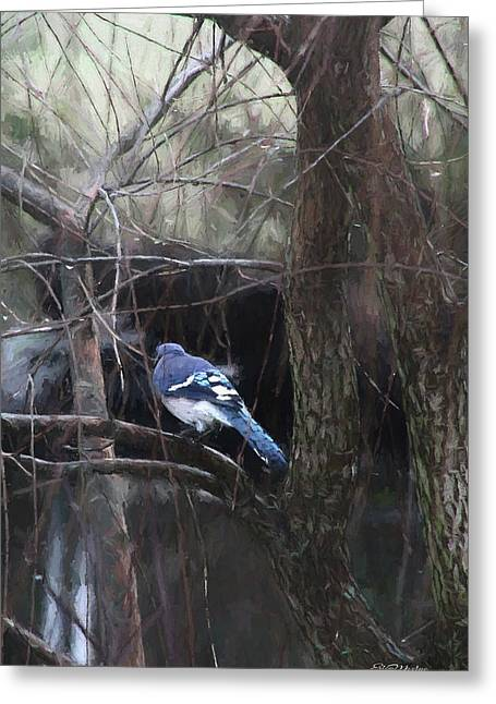 Blue Jay In The Willow 51 Greeting Card by Ericamaxine Price