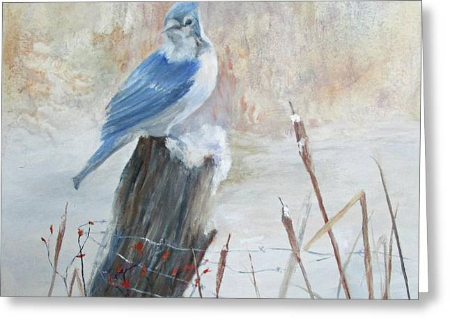 Blue Jay In Winter Greeting Card by Roseann Gilmore