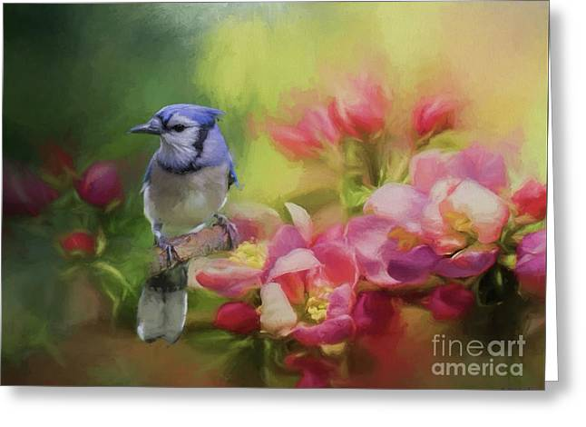 Blue Jay On A Blooming Tree Greeting Card