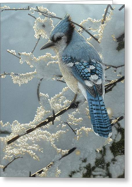 Blue Jay - On The Fence Greeting Card