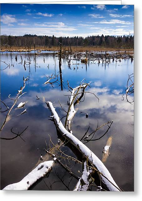 Blue Lake And Sky In Winter Schwenninger Moos Greeting Card