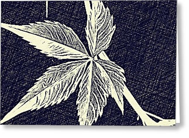 Blue Leaf Greeting Card