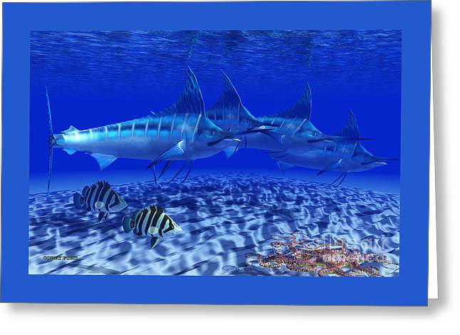 Blue Marlin Pack Greeting Card by Corey Ford