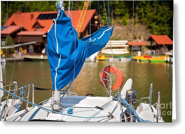 Blue Mast Covering Sheath Foreground Greeting Card by Arletta Cwalina
