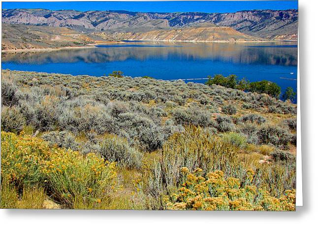 Blue Mesa Reservoir 1 Greeting Card