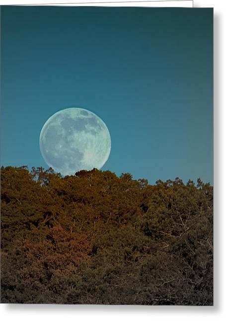 Blue Moon Risign Greeting Card by Karen Musick