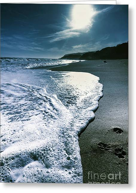 Greeting Card featuring the photograph Blue Moonlight Beach Landscape by Jorgo Photography - Wall Art Gallery