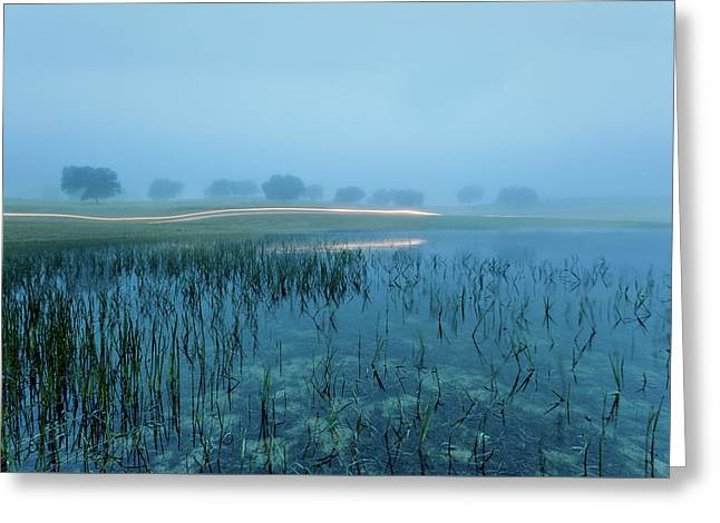Greeting Card featuring the photograph Blue Morning Flash by Jorge Maia