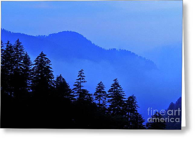 Greeting Card featuring the photograph Blue Morning - Fs000064 by Daniel Dempster
