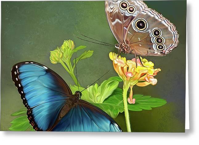 Blue Morpho  Butterflies Greeting Card