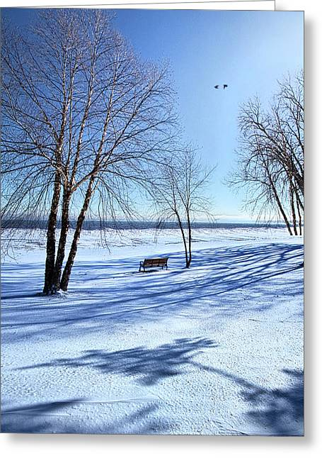 Greeting Card featuring the photograph Blue On Blue by Phil Koch