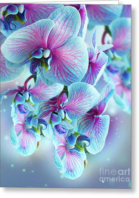 Blue Orchid Branch Greeting Card by Anastasy Yarmolovich
