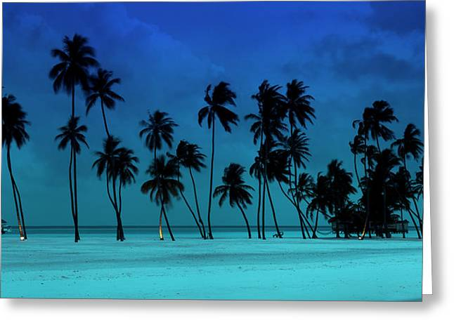 Blue Palms Greeting Card by Sean Davey