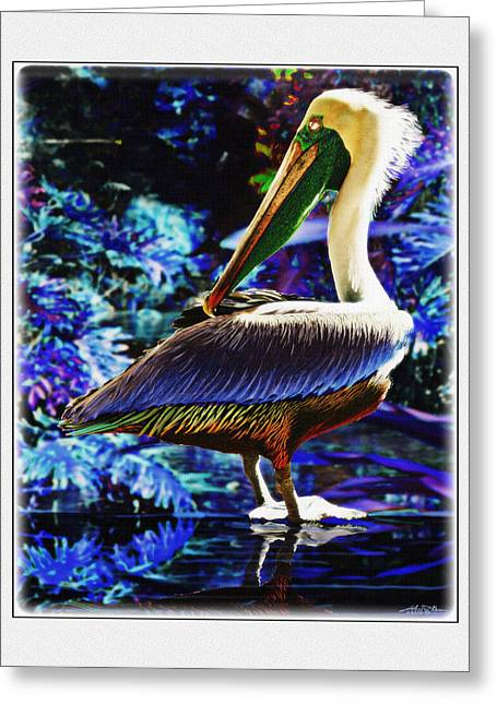 Blue Pelican Greeting Card by John Breen