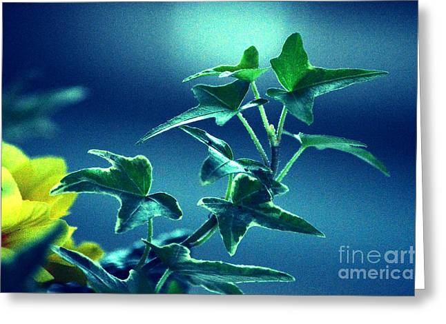 Greeting Card featuring the photograph Blue Power  by Susanne Van Hulst
