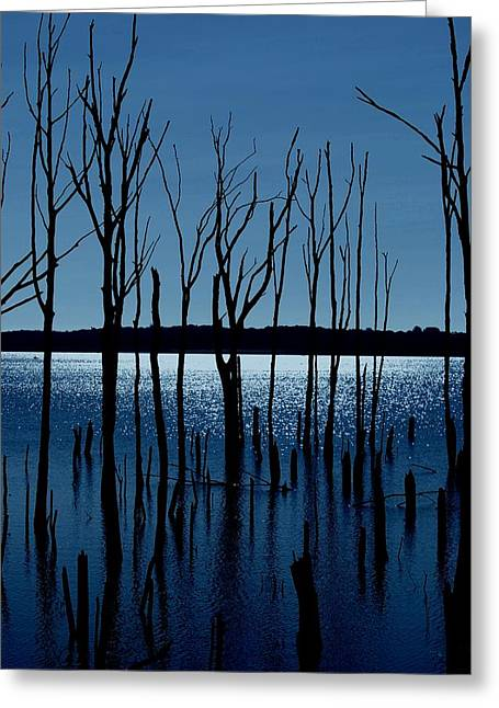 Blue Reservoir - Manasquan Reservoir Greeting Card