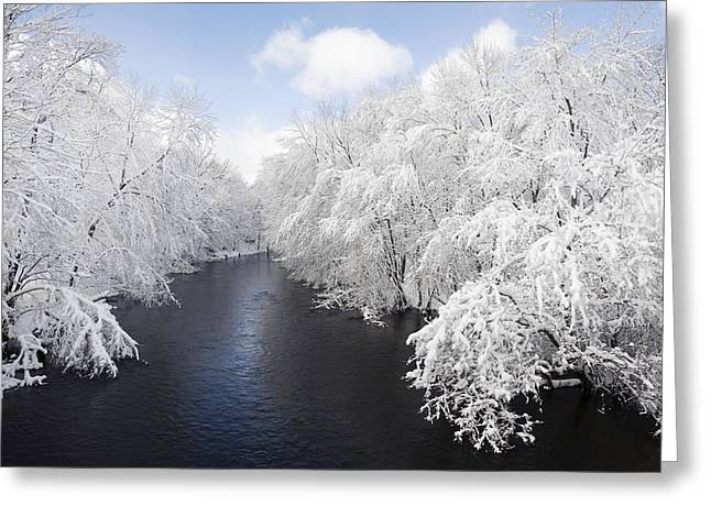 Blue Ribbon River Greeting Card