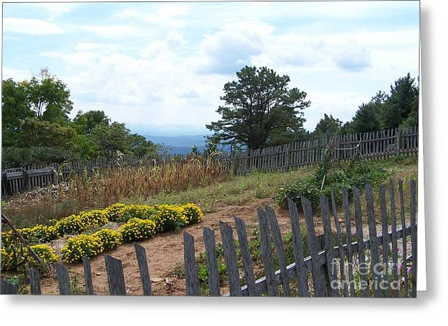Blue Ridge Garden Greeting Card by Randy Edwards