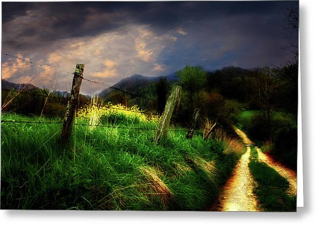 Blue Ridge Mountain Country Road Greeting Card by Gray  Artus
