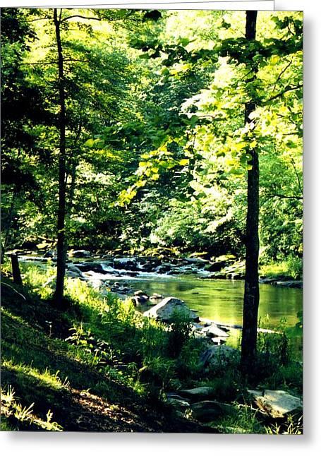 Rush-bed Greeting Cards - Blue Ridge Mountain Creek Greeting Card by Christean Ramage