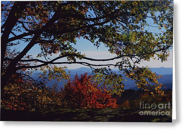 Greeting Card featuring the photograph Blue Ridge Mountain View by Debra Crank