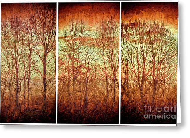 Blue Ridge Mountain Winter Trees At Sunrise Fx Greeting Card