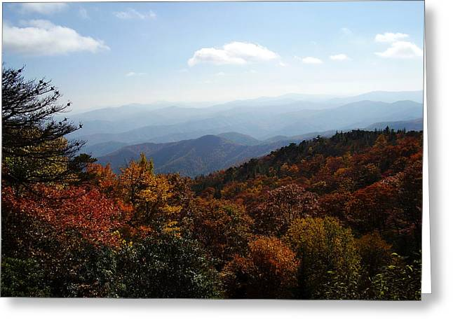 Blue Ridge Mountains Greeting Card by Flavia Westerwelle