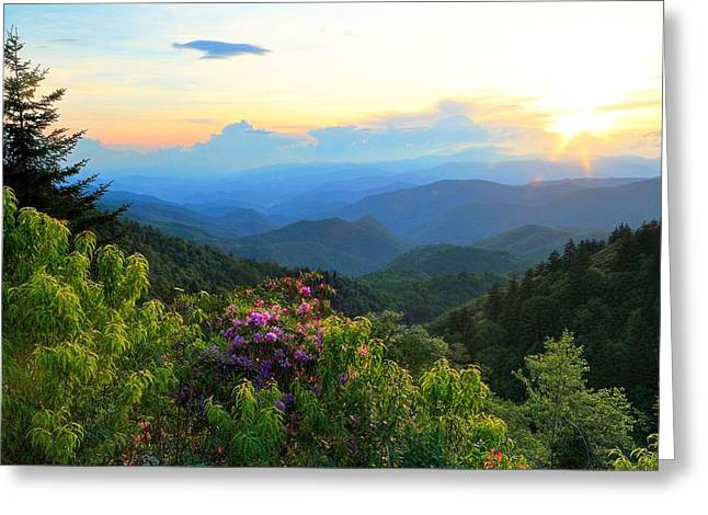 Blue Ridge Parkway And Rhododendron  Greeting Card