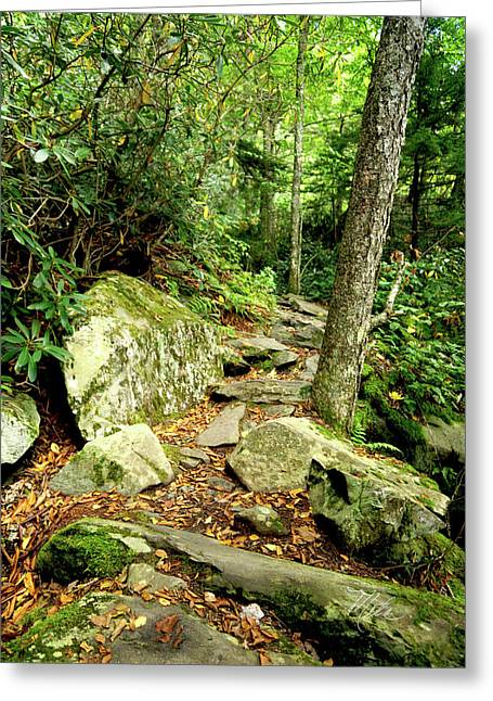 Greeting Card featuring the photograph Blue Ridge Parkway Hiking Trail by Meta Gatschenberger