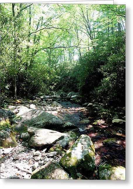 Greeting Card featuring the photograph Blue Ridge Parkway Stream by Meta Gatschenberger