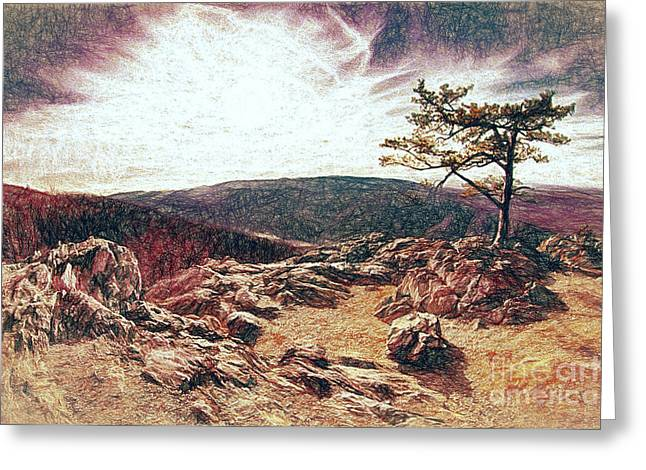 Blue Ridge Rocky Hilltop And Tree At Sunset Fx Greeting Card by Dan Carmichael