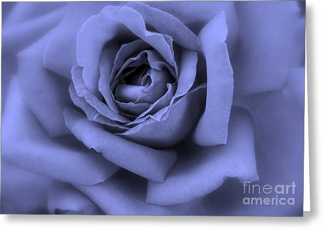 Blue Rose Abstract Greeting Card by Carol Groenen